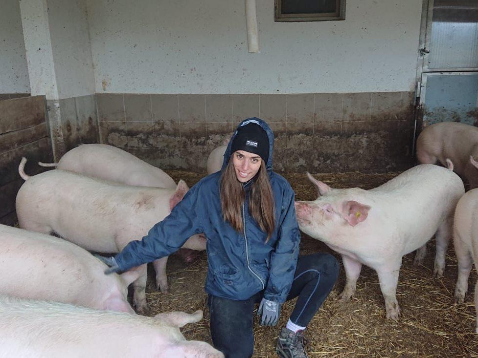 Viktoria Eichinger zwischen Ihren Mastschweinen