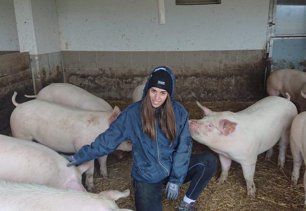 B2P023 Viktoria Eichinger & Familie – Ferkelaufzucht und Schweinemast