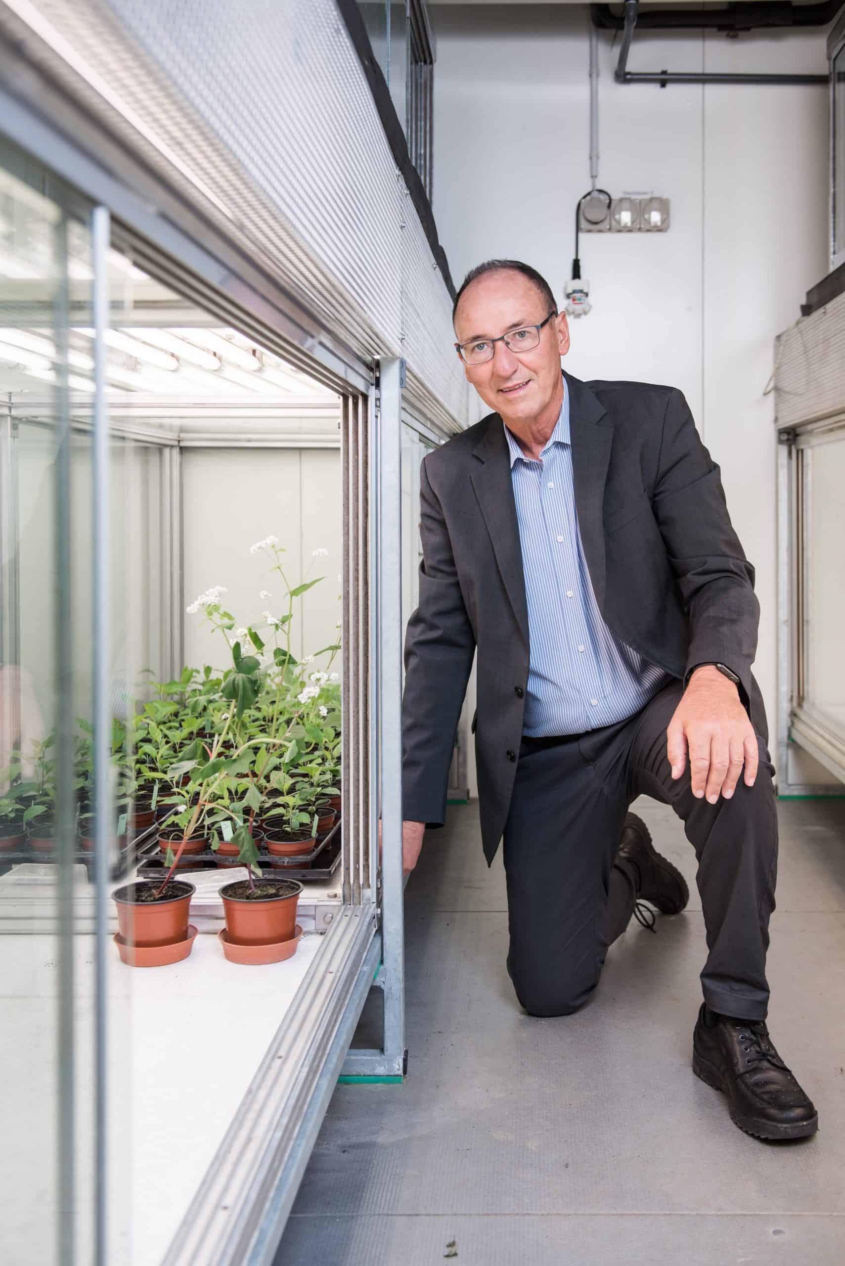 Urs Niggli vor der Klimakammer mit Weizenpflanzen