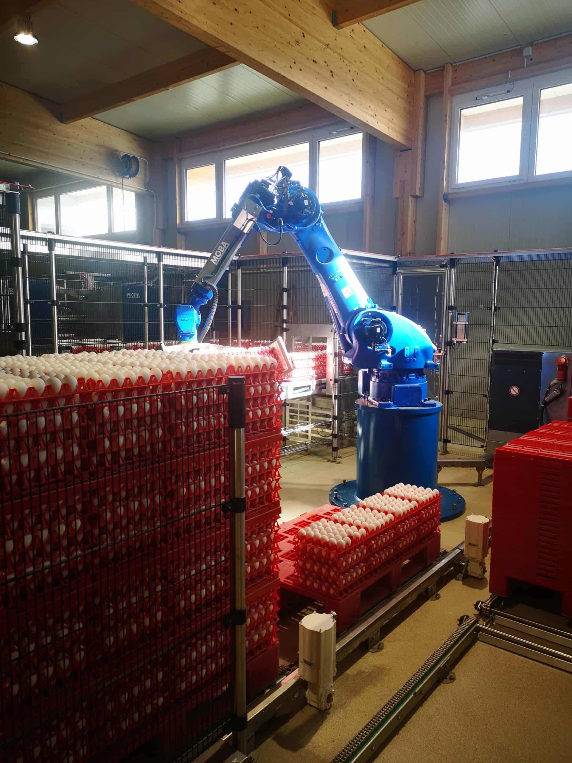 Roboterarm zur Sortierung von Eiern bei Schrall Eier