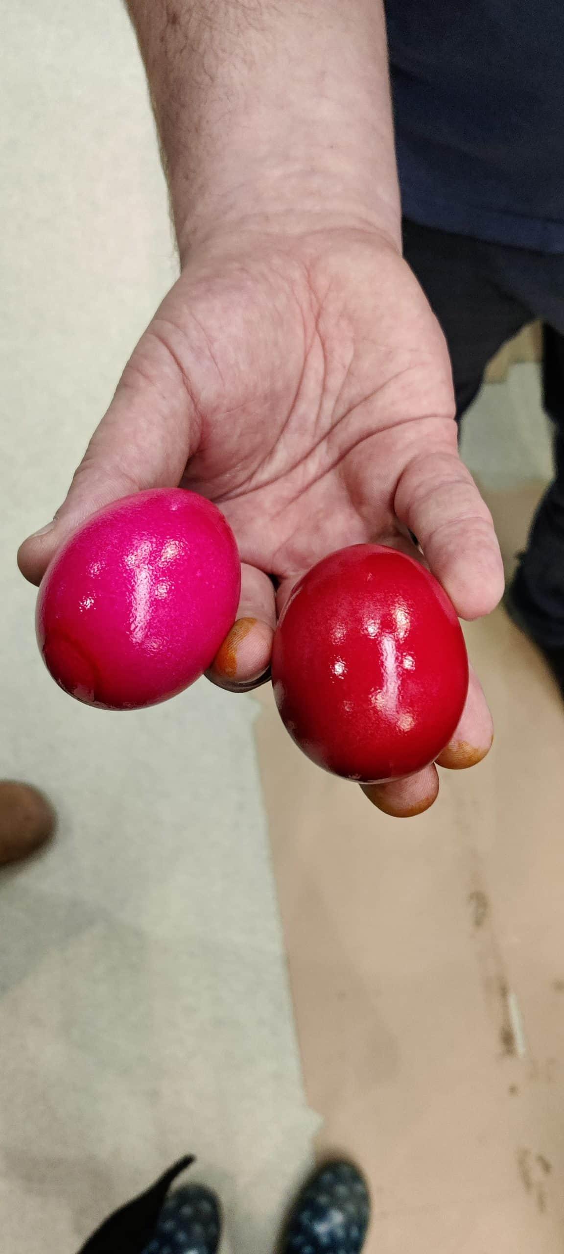 Gleich Farbe mit einem weißen und einem braunen Ei