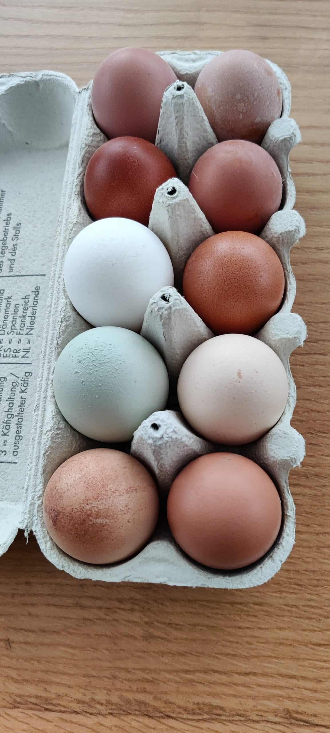 Eier vom Gredlbauer