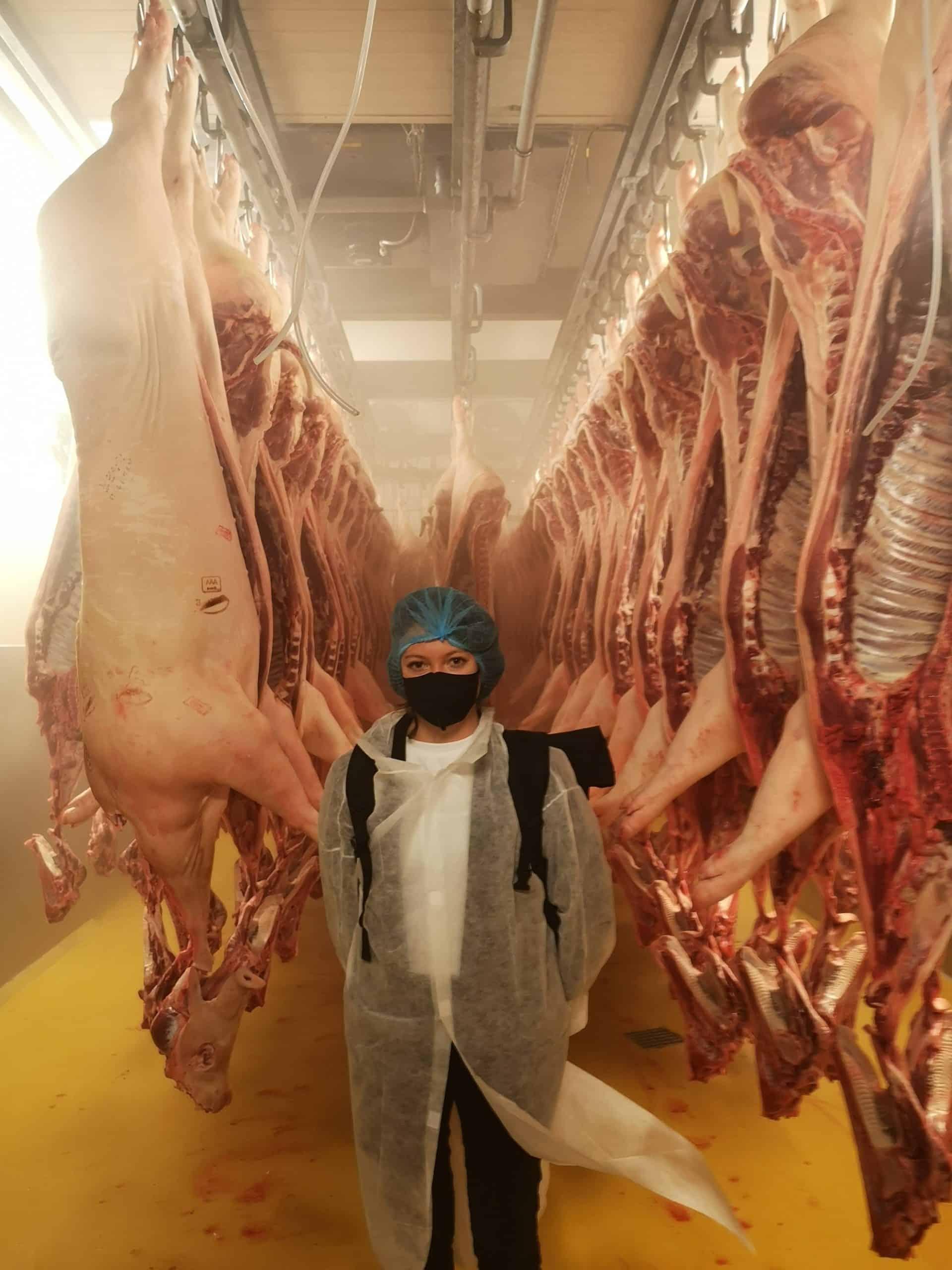 Bianca Blasl im Auskühlraum - im Hintergrund hängende Schweinehälften bei Berger Schinken