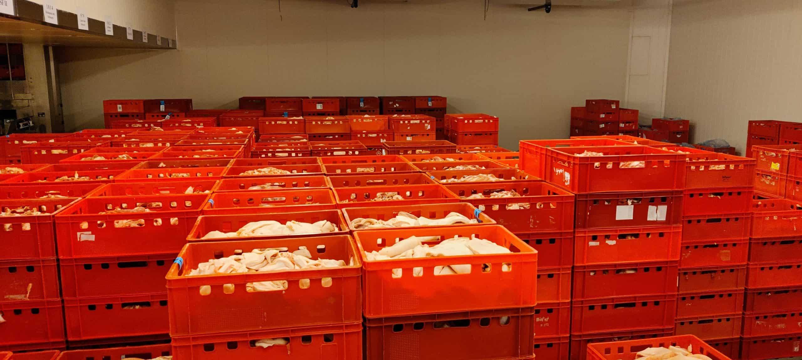 Rohstoffkühlraum Wursterei bei Berger Schinken - Fleisch in roten Fleischkisten