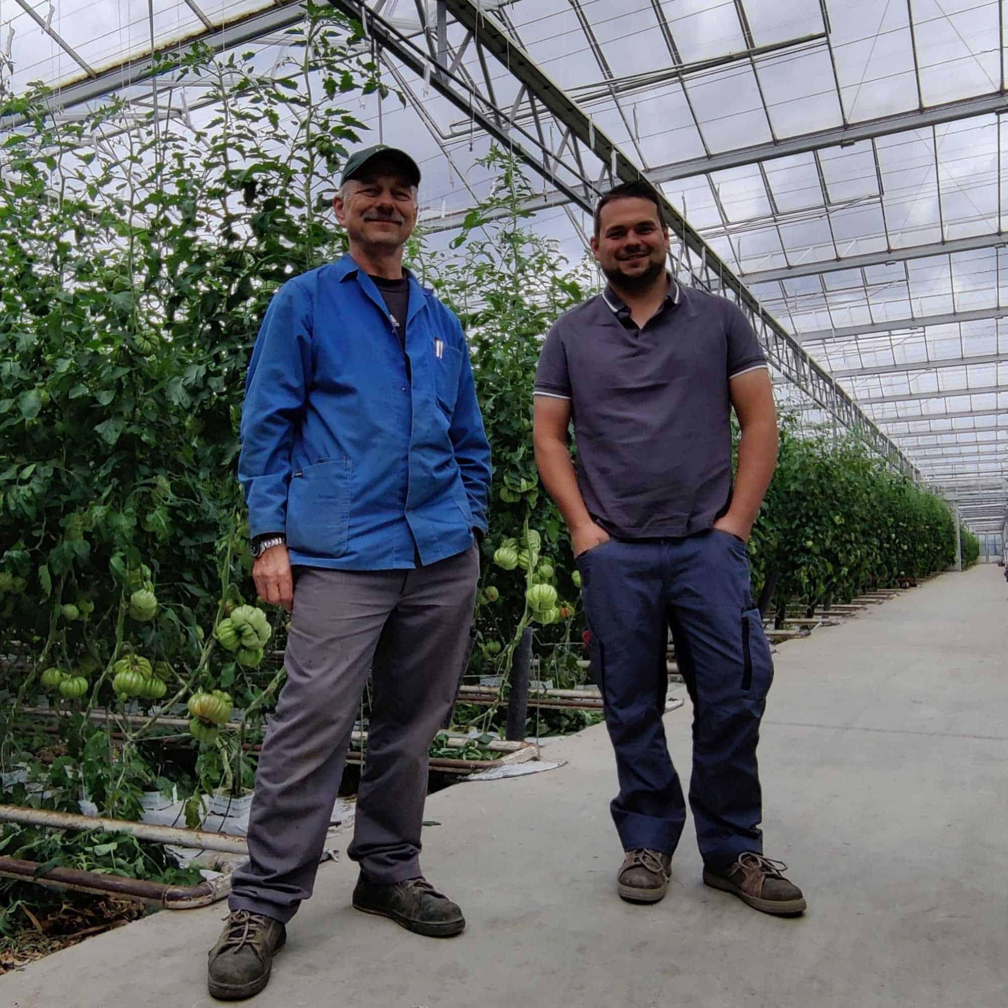 Franz und Markus Pannagl in einem ihrer Glashäuser